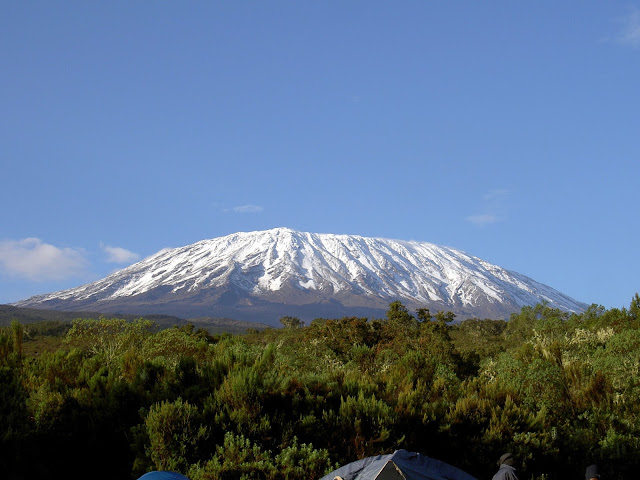 snow capped kilimanjaro
