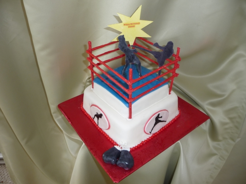 Icing On Top Cakes For Every Occasion Kickboxing Cake