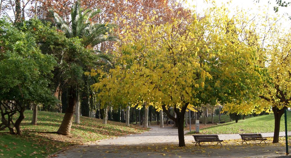 Parc de Carles I (Barcelona) per Teresa Grau Ros