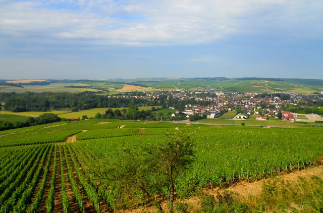 stad chablis, wijntoerisme, oenotoerisme,wijntoerisme chablis, vititours chablis, chablis, wijngaarden chablis,
