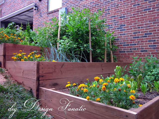 raised beds, raised beds on a slope, vegetable garden, building project, diyDesignFanatic.com,