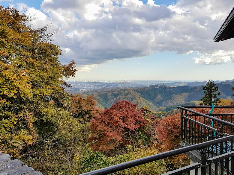 從高尾山上俯瞰都市的景色