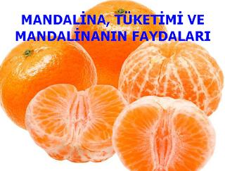 MANDALİNA, TÜKETİMİ VE MANDALİNANIN FAYDALARI