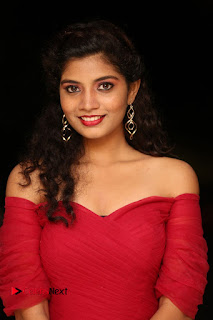 Bindu new spicy actress in a spicy deep neck red gown at Attarillu Movie Press