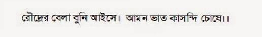 roudrer bela buni aishe - bengali proverb