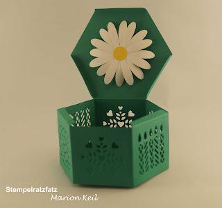 Box Fensterschachtel mit Gänseblümchen mit Stampin´ Up!