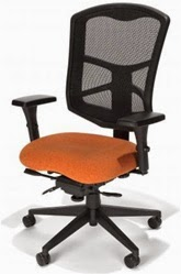 Echelon Mesh Chair