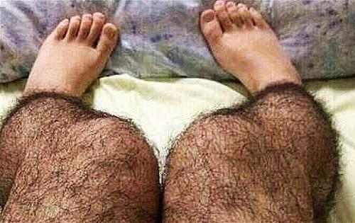 Hairy Hispanics 50