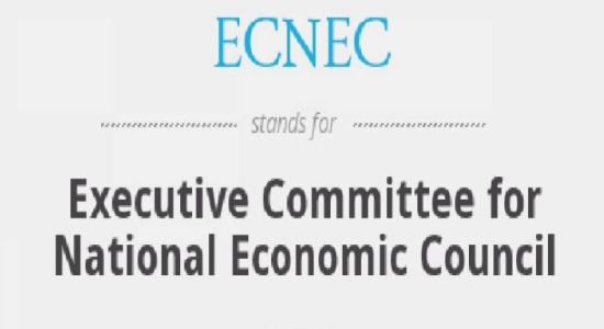 Ecnec Approves Rs134b Development Projects Including Chakwal