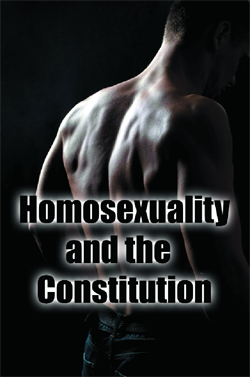 G0y heterosexual meaning