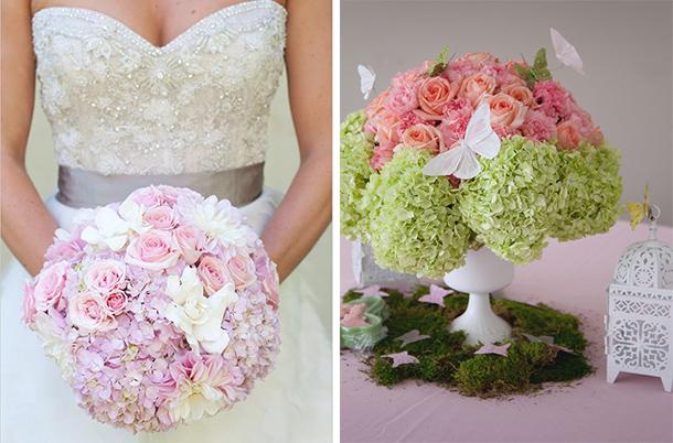 las hortensias se encuentran en colores pastel como morado verde azul rosado y blanco son flores econmicas