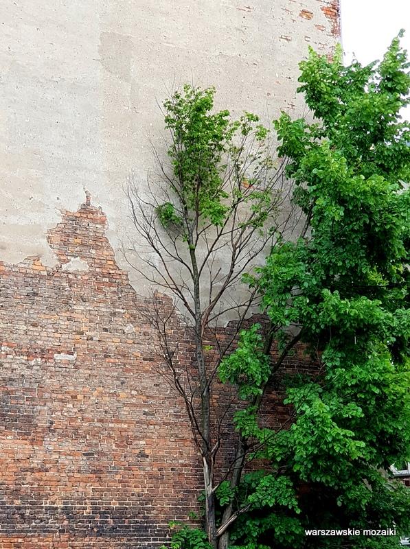 Warszawa Warsaw Praga Północ praskie ulice kamienica architektura praskie klimaty