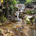A Sant Feliu de Pallerols (Camí de la Font Grossa)