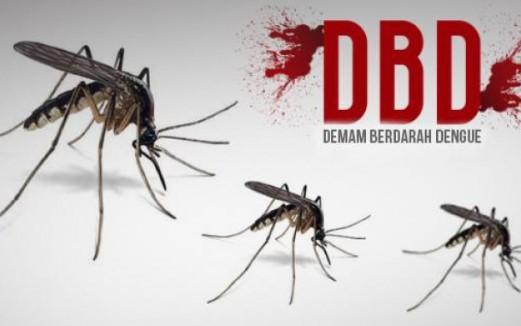 Demam Berdarah Dengue ( DBD ) - Penyebab  Gejala Pencegahan dan Pertolongan Pertama
