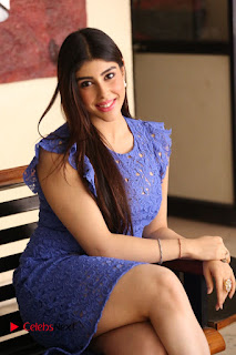Actress Aditi Singh  Pictures in Short Dress at Movie Interview  0175