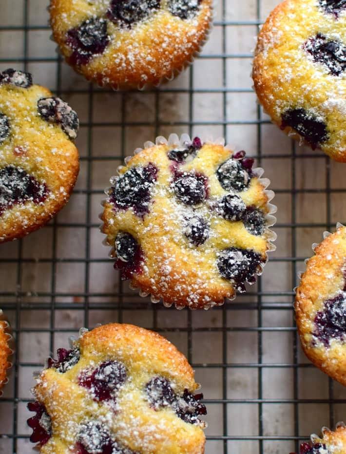 Muffins de hechos en parte con harina de maíz amarillo y arándanos frescos, antes de llevar al horno se espolvorean con azúcar para una corteza dorada y crocante