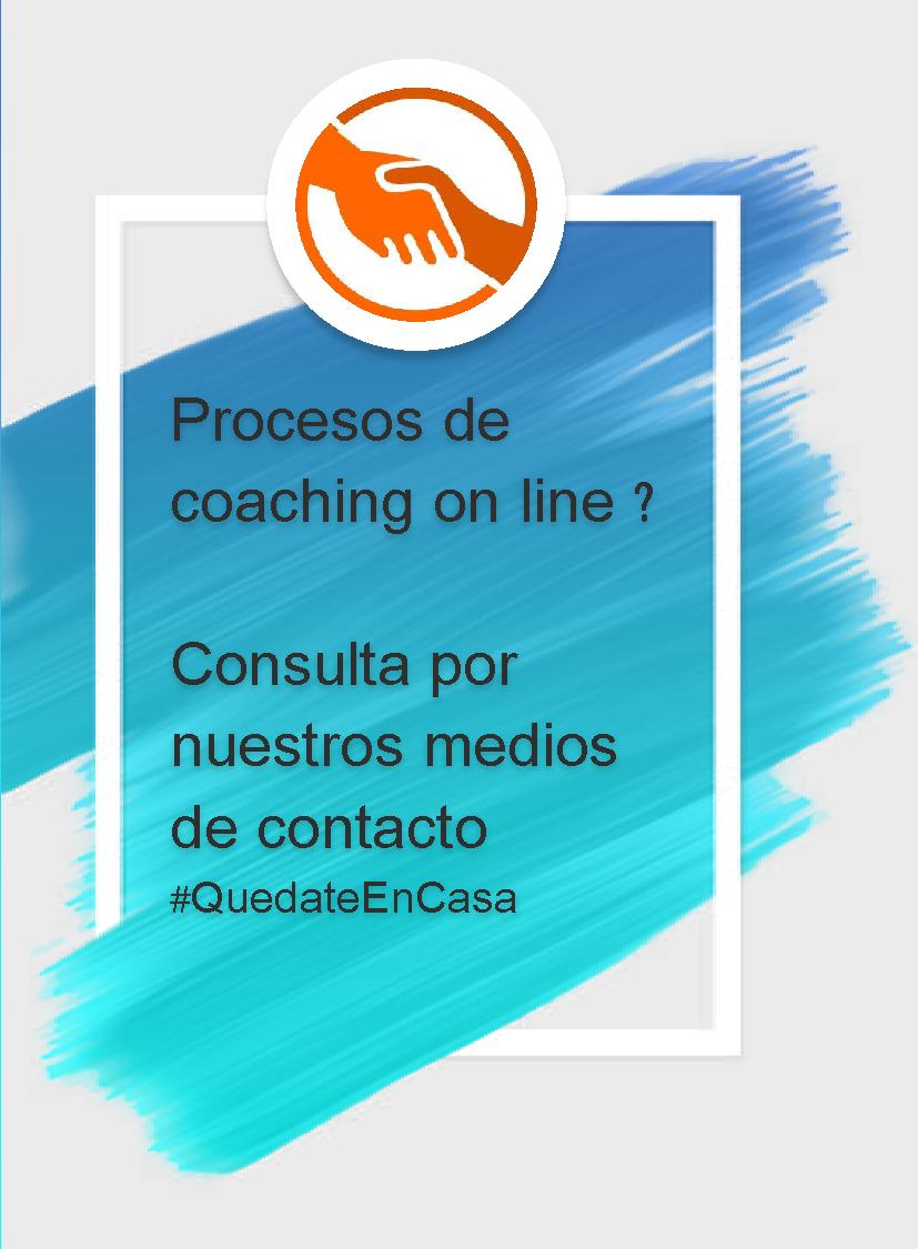Procesos de coaching on line