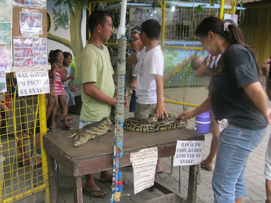Pet the snakes and lizards in Manila Zoo