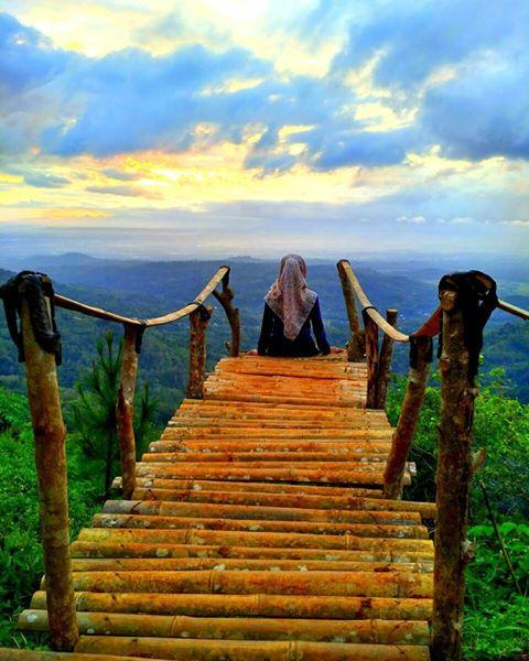 Wisata Murah Meriah Yang Wajib Anda Kunjungi Keindahan Jogja Di Bukit Lintang Sewu