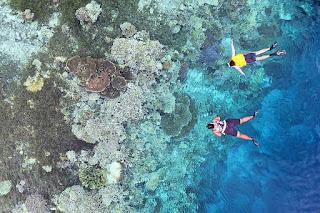 Latondu Wall, Taman Nasional Takabonerate, Kabupaten Kepulauan Selayar Photo by @berangan_trip