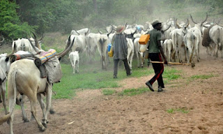 Over 100 Killed, 50 Houses Burnt Down As Fulani Herdsmen Attack 11 Plateau Villages