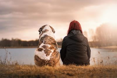 Pas pre dolaska prinove mora biti naučen na nova pravila ponašanja