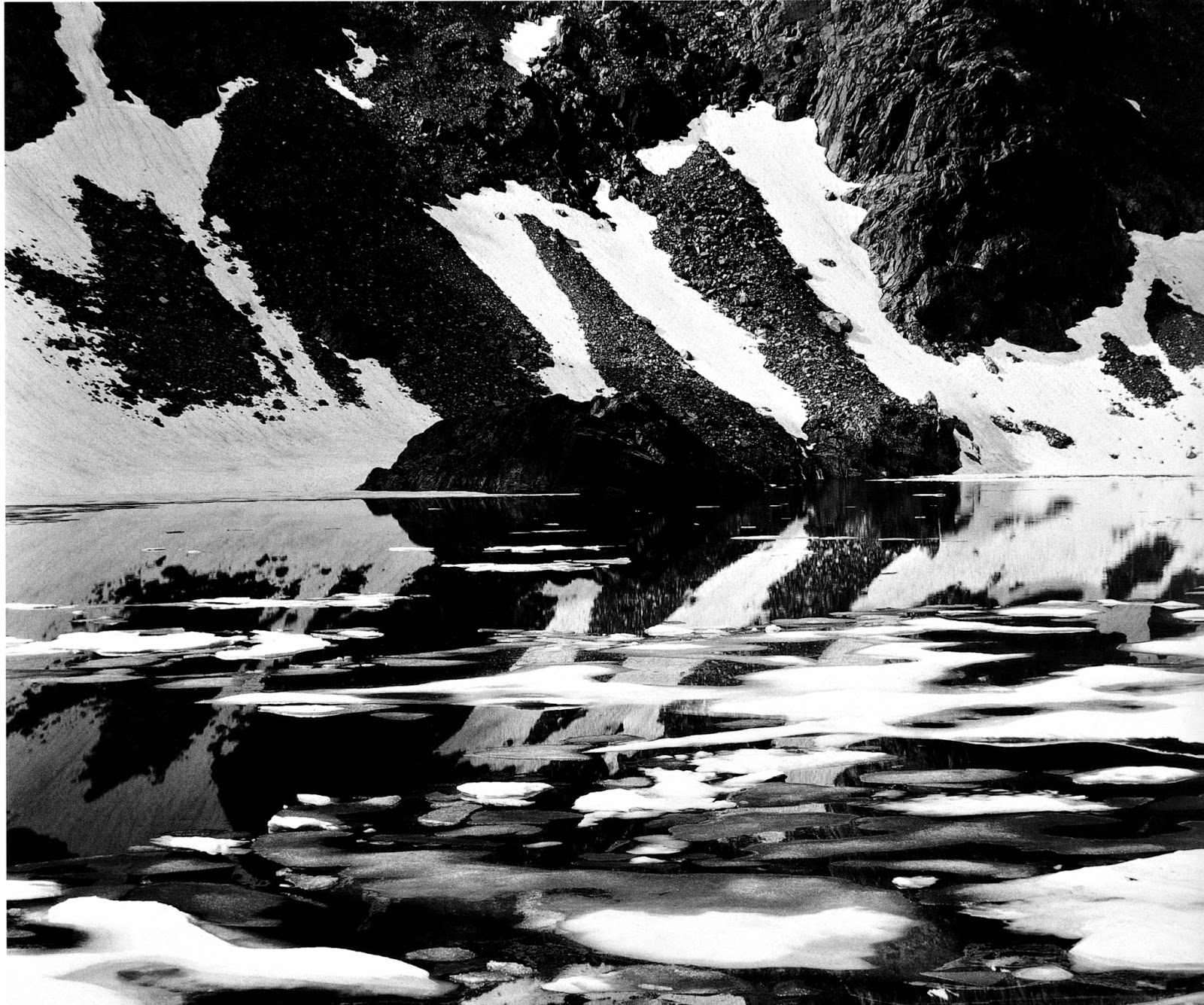 Iconic and Rare Edward Weston Prints from the Cole Weston Trust - Westons Westons - Exhibitions
