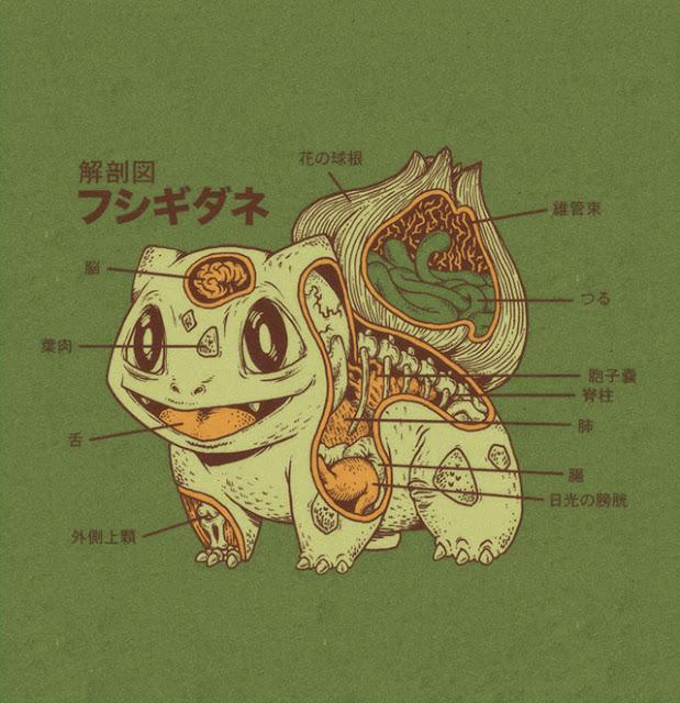 可愛いポケモンの解剖図。見たくなかったグロい部分も?【a】 フシギダネ