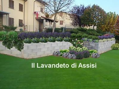 Progetti giardini privati gratis on line con piante for Giardini ornamentali