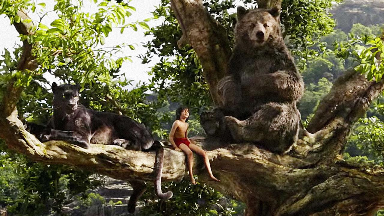 Jungle 2016 sub indonesia film book