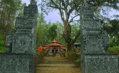 Pesugihan Pohon Dawandaru Gunung Kawi  Bebas Hutang Puluhan Juta