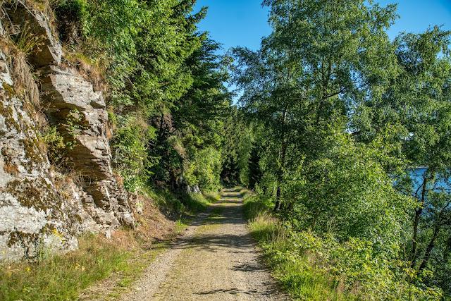Rundweg Eckerstausee  Wanderung Bad Harzburg 13