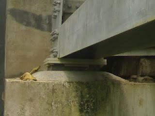 Elastomer Karet jembatan