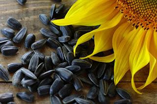 Makanan Semula Jadi Yang Mengandungi Vitamin