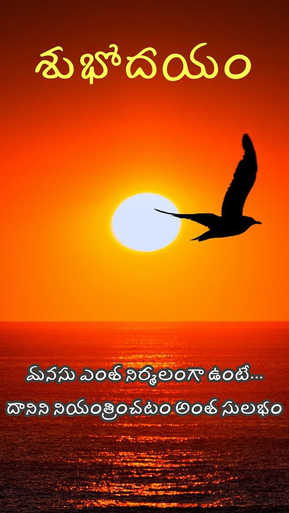 Good Morning Quotes In Telugu With Images Good Morning Quotes In