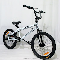 20 Inch Wimcycle Blade Dragon FreeStyle BMX Bike