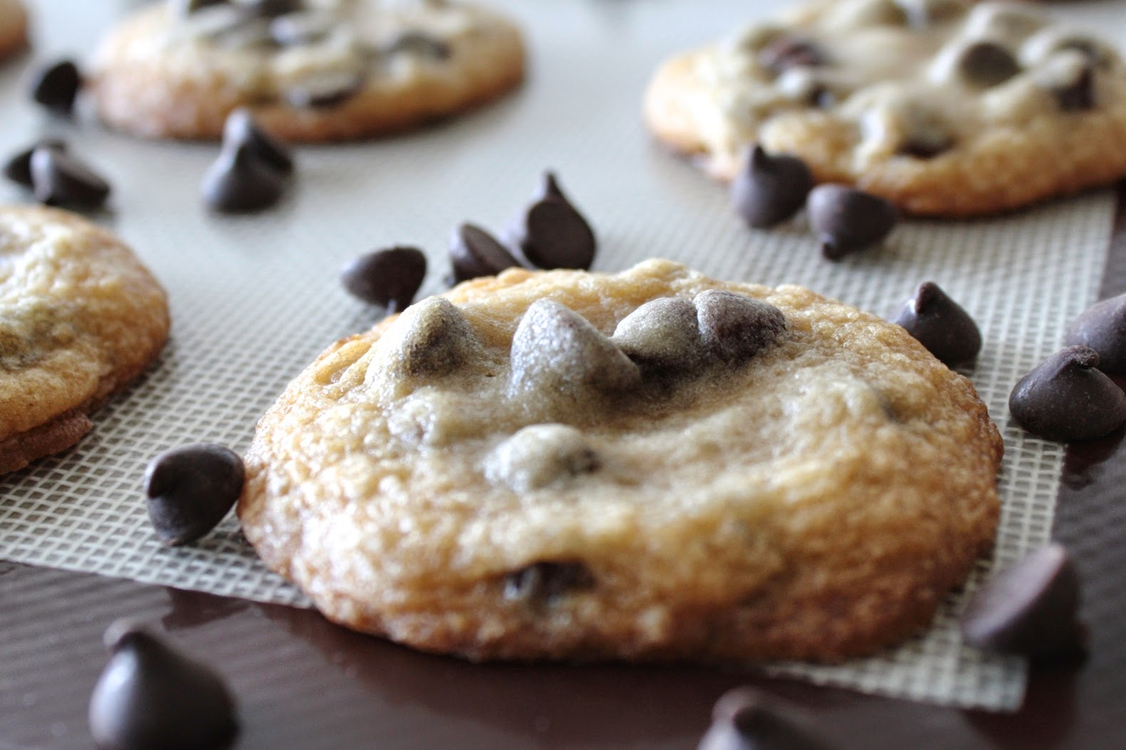 A close up of a cookie