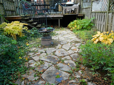 Leslieville Toronto Fall Garden Cleanup Before by Paul Jung Gardening Services--a Toronto Organic Gardener
