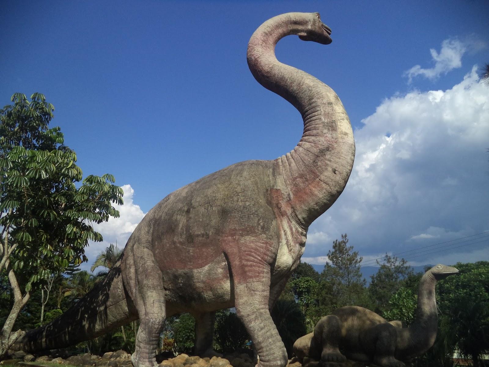 Hasil gambar untuk dinosaurus