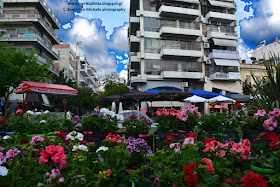 Γιορτή της Μητέρας σήμερα, και η κεντρική πλατεία της Κατερίνης ομόρφυνε από πολύχρωμα λουλούδια!