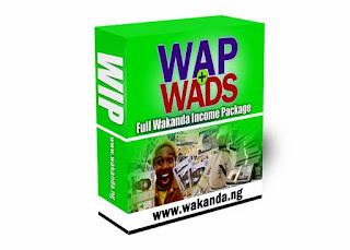 How to make money with Wakanda Nation Income
