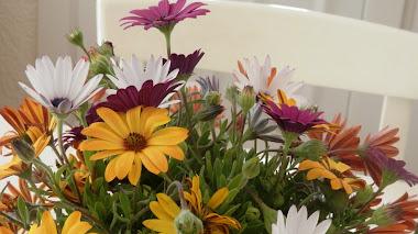 Garden bouquet. Flores frescas para iluminar el día