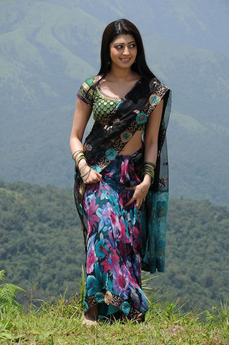 Cute pranitha in designer saree