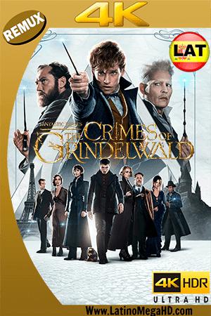 Animales Fantásticos: Los Crímenes de Grindelwald (2018) Latino Ultra HD BDRemux 2160P ()