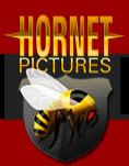 https://hornetpictures.tv/