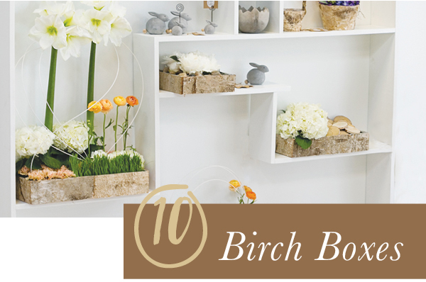 Accent Decor Bestseller: Birch Boxes