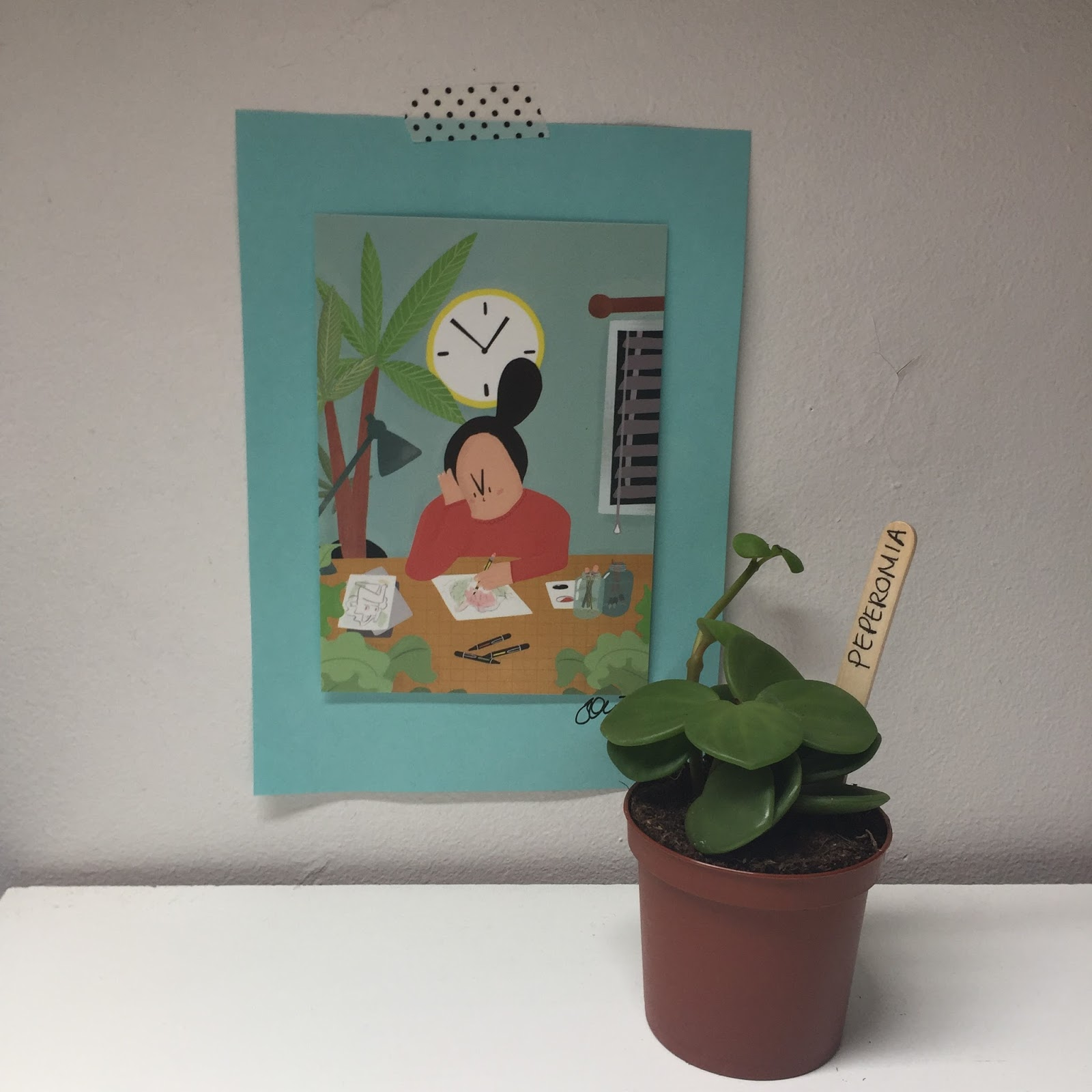 peperomia and art current favourites