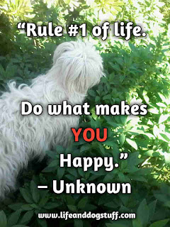do what makes you happy quote.