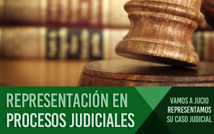 REPRESENTACIÓN EN PROCESOS JUDICIALES Barcelona