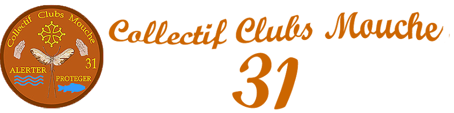 Collectif Clubs Mouche 31